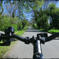 Back-roads and Birdsong